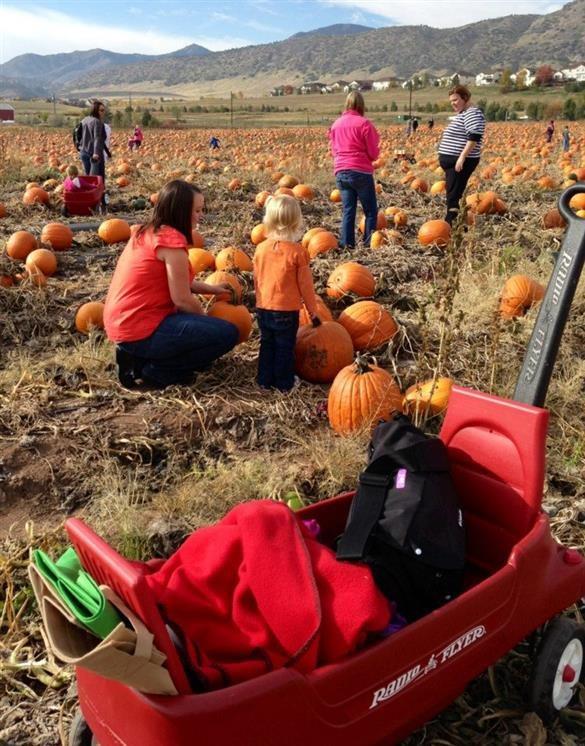 denver botanic gardens pumpkin festival colorado haunted houses